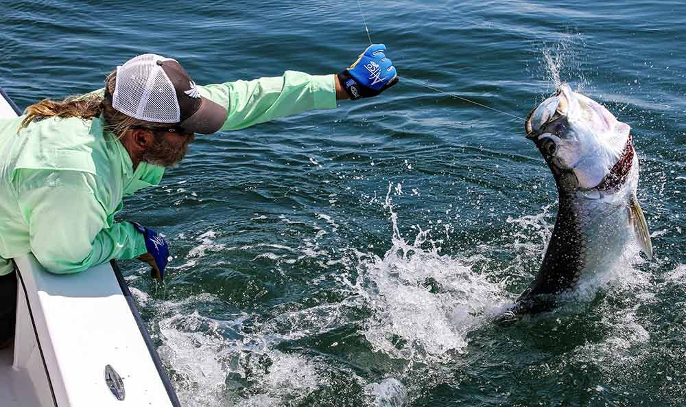 The New Sight Fishing: Locating and Catching Tarpon with